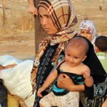 A Call for Positive and Constructive Social Action in Iraq